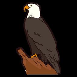 Ilustração de águia de asa