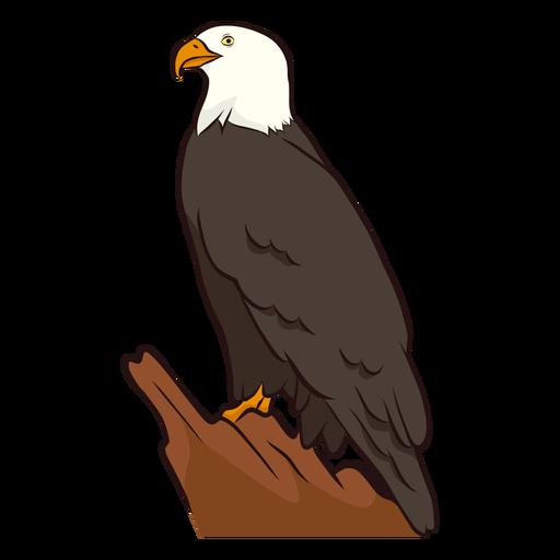 Ilustração de águia de asa Transparent PNG