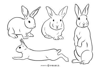 Rabbit Stroke Illustration Set