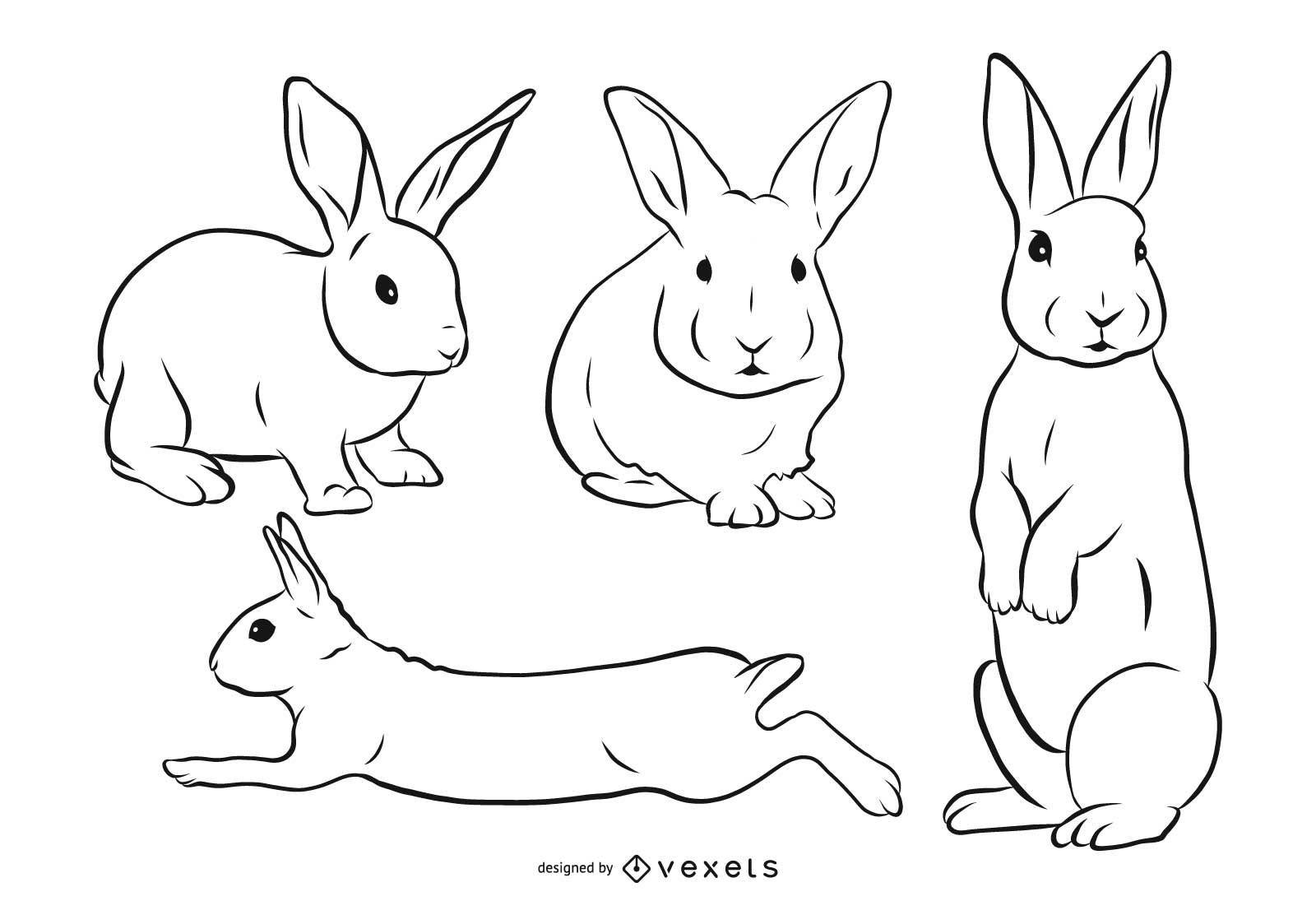 Rabbit Stroke Illustration Set