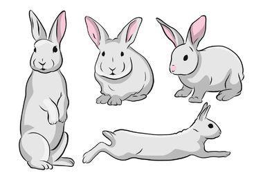 Conjunto de ilustração de coelho fofo