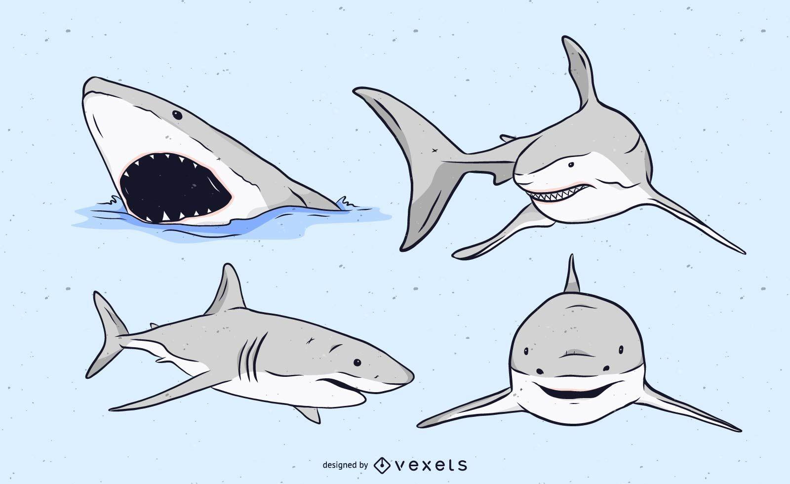 Shark Illustration Set