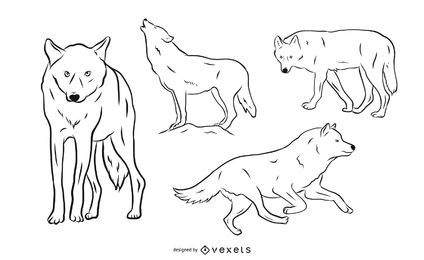 Wolf-Illustrationssatz
