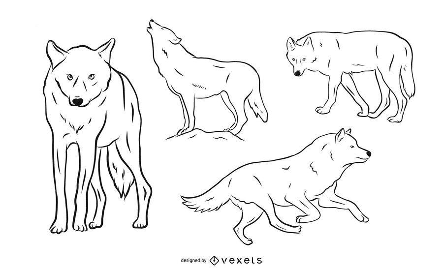 Conjunto de ilustração de lobo