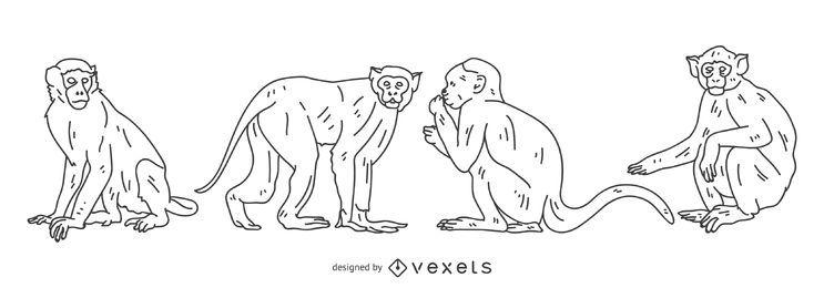 Conjunto de trazo de mono