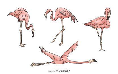 Conjunto de ilustración de flamenco rosa
