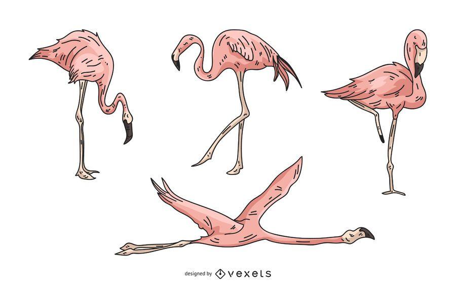 Rosa Flamingo-Illustrationssatz