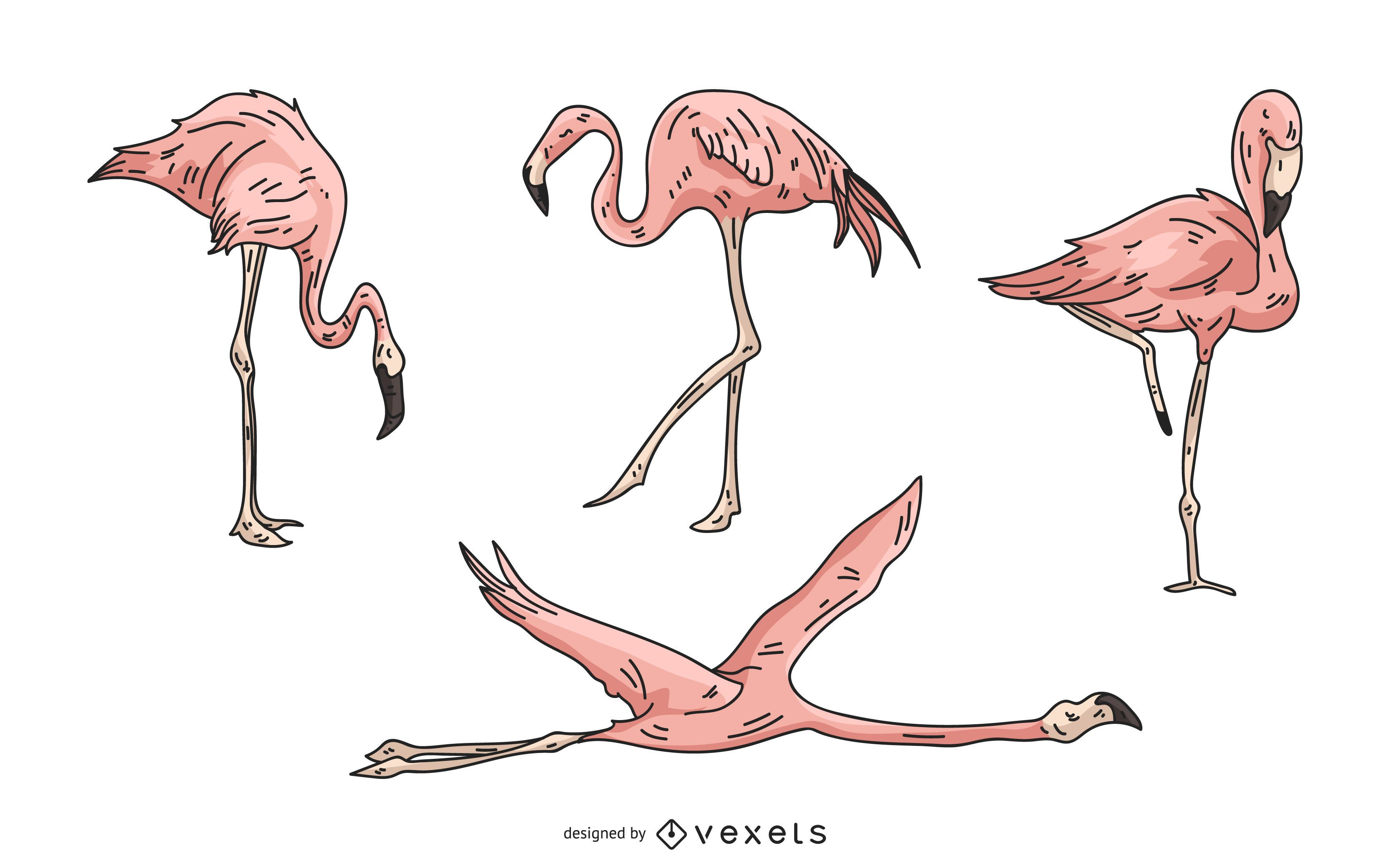 Pink Flamingo Illustration Set