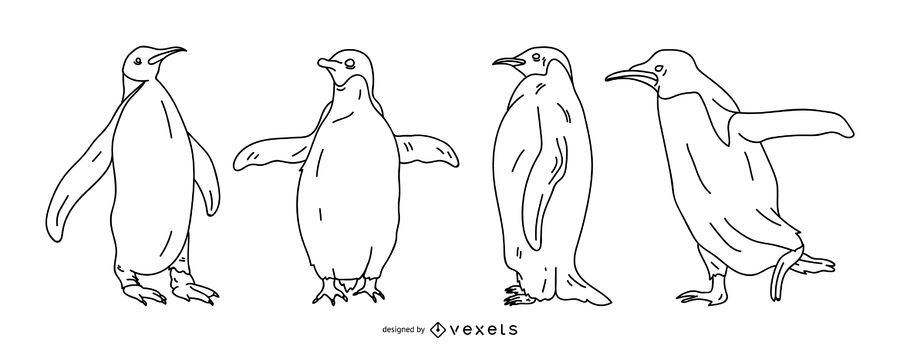 Penguin Stroke Illustration Set