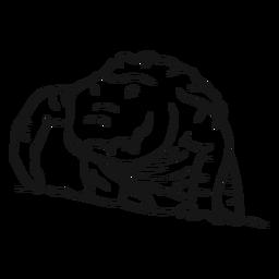 Esboço de presas jacaré crocodilo
