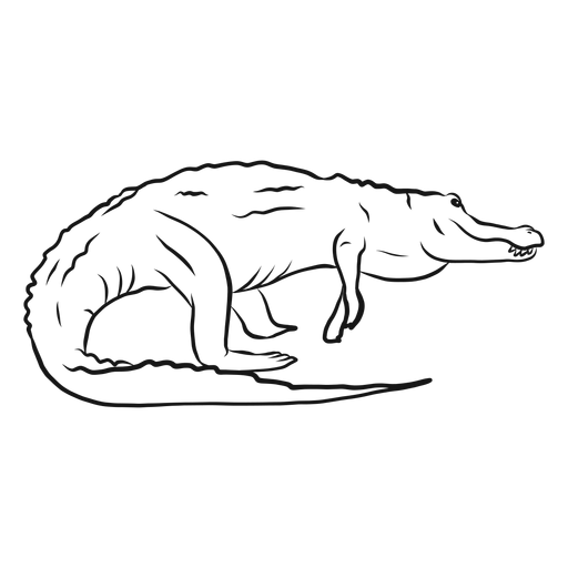 Alligator crocodile fang tail sketch Transparent PNG
