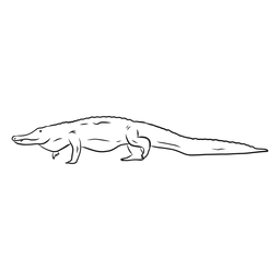 Esboço de cauda de jacaré crocodilo