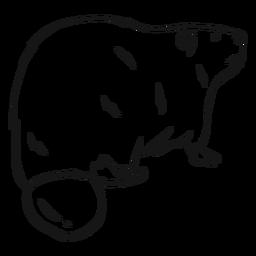 Desenho de cauda de pele de roedor de castor