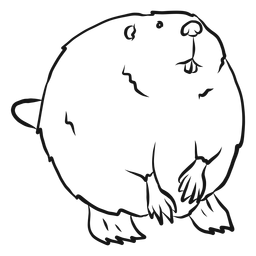 Beaver tail fur rodent sketch