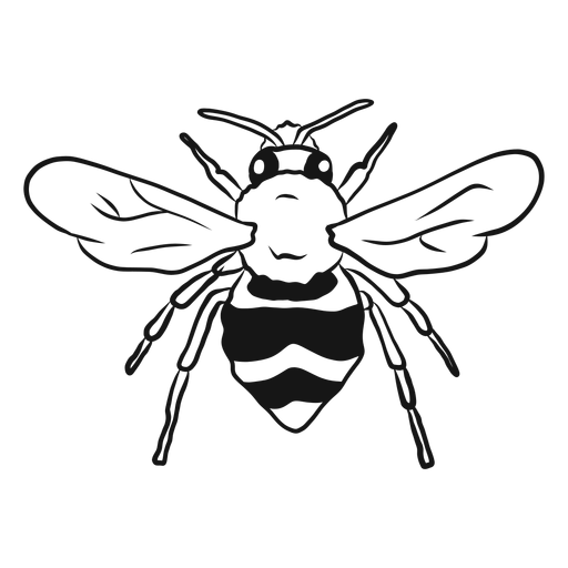 Bee wing wasp stripe sketch Transparent PNG