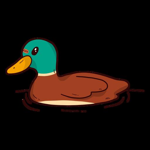 Lindo pato drake pato salvaje pico agua nadando plano
