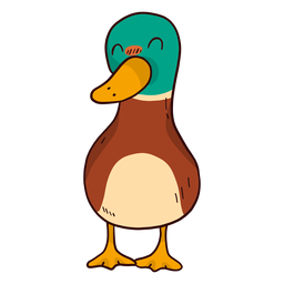 Cute duck drake wild duck beak flat