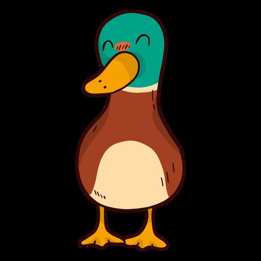 Lindo pato pato pato salvaje pico plano