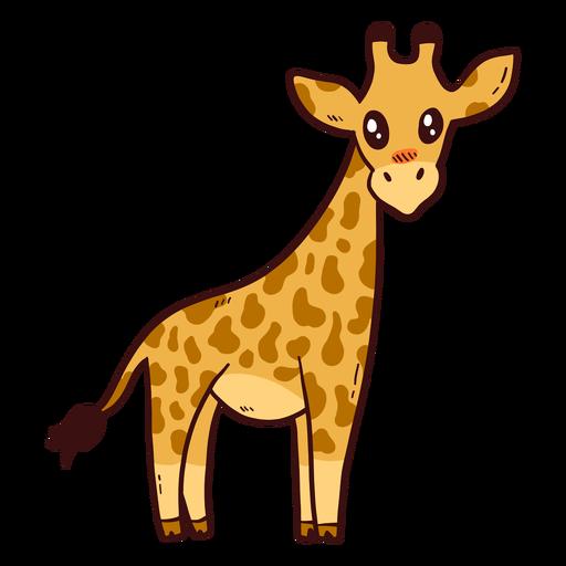 Langes Ossicones mit hohem Halsschwanz der niedlichen Giraffe flach Transparent PNG