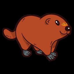 Linda tierra de cerdo marmota piel hocico cola plana