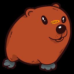 Marmota de porco de chão bonito focinho peles planas