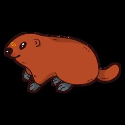 Marmota de porco bonito porco marmota pele de cauda plana