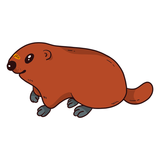 Marmota de porco bonito porco marmota pele de cauda plana Transparent PNG