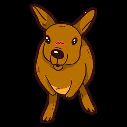 Lindo canguro bebé canguro oreja pierna plana
