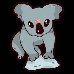 Koala linda oreja pierna nariz piedra plana