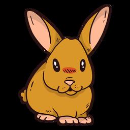 Coelho bonito coelho orelha focinho gordura plana