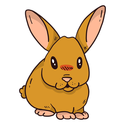 Conejo lindo conejo oreja hocico gordo plano