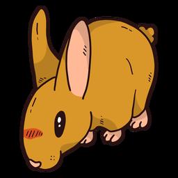 Conejo lindo conejo oreja bozal plana