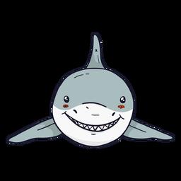 Lindo diente de aleta de tiburón plano
