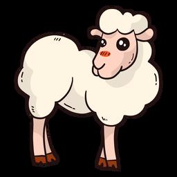 Lindo cordero de lana de oveja cordero plano
