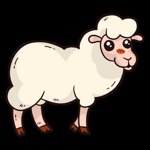 Lindo pezuña de cordero de lana de oveja plana