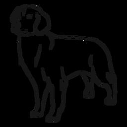 Esboço de orelha de cachorro