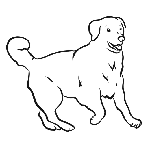 Dog ear tail sketch Transparent PNG