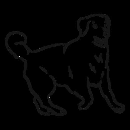Esboço de cauda de orelha de cachorro Transparent PNG