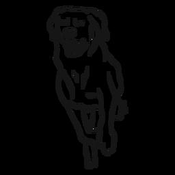 Esboço de língua de cão correr