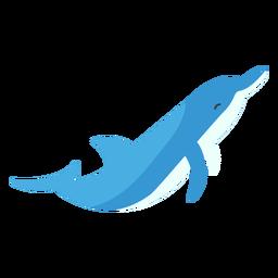 Aleta de aleta de delfines cola plana