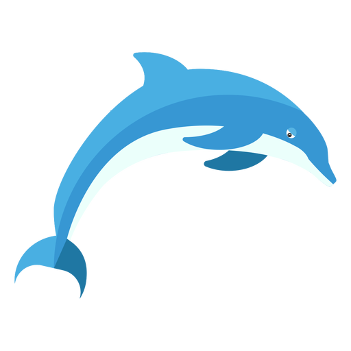 Dolphin flipper tail swimming flat Transparent PNG