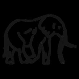 Bosquejo de elefante oreja marfil tronco cola