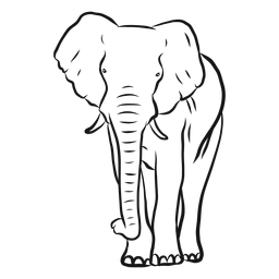 Bosquejo de tronco de oreja de marfil de elefante