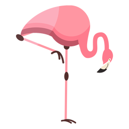 Flamingo Schnabel rosa Bein flach