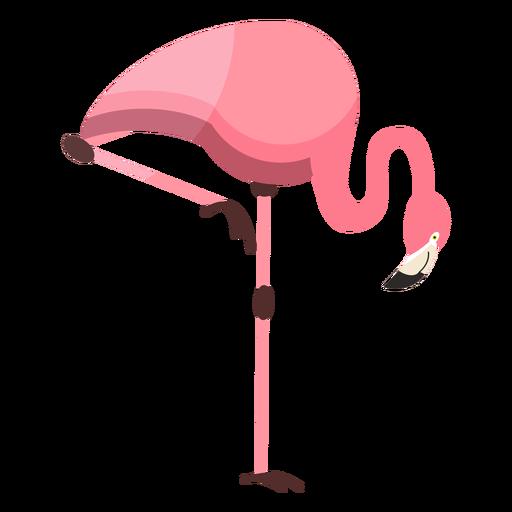 Flamingo beak pink leg flat