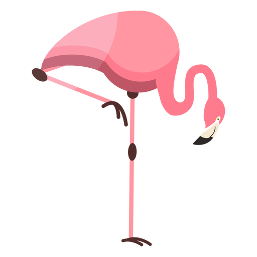 Flamingo Schnabel rosa Bein flach Transparent PNG