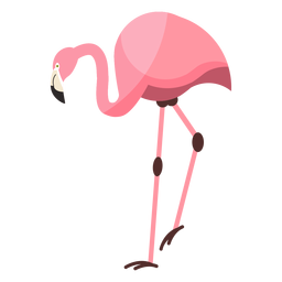 Flamingo pink beak leg flat