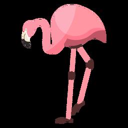 Flamingo rosa bico perna plana
