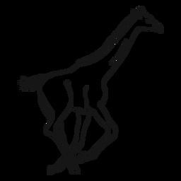 Jirafa cuello alto cola larga correr ossicones boceto