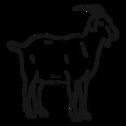 Bosquejo de cola de pezuña de cabra boceto